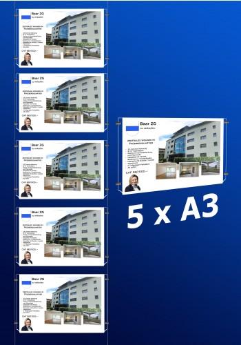 raampresentatie - raamdisplay 5 x a3 (A3 papier)